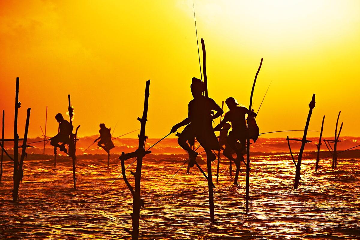 Stilt fishermen en Sri Lanka