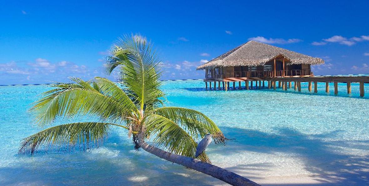 arenatours medhufushi