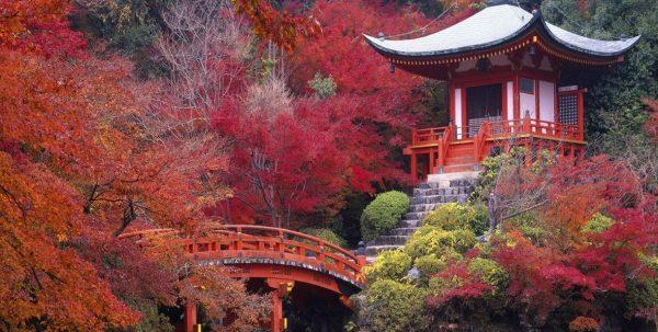 Templo con puente inmerso en la naturaleza de Nara en Japón