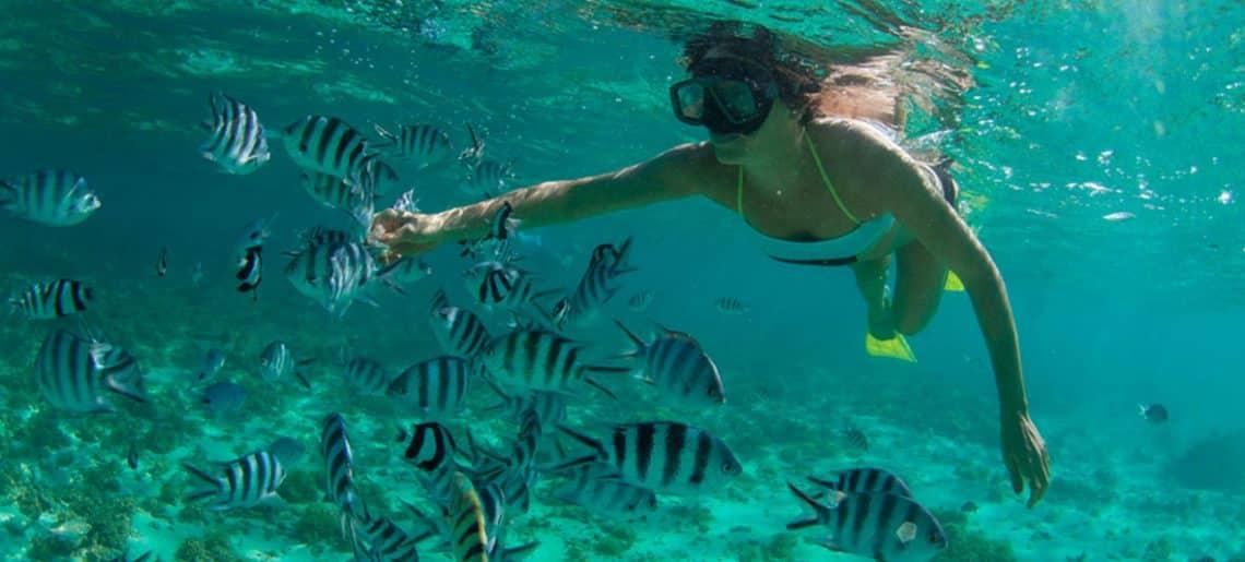 Bucear en la Isla Mauricio