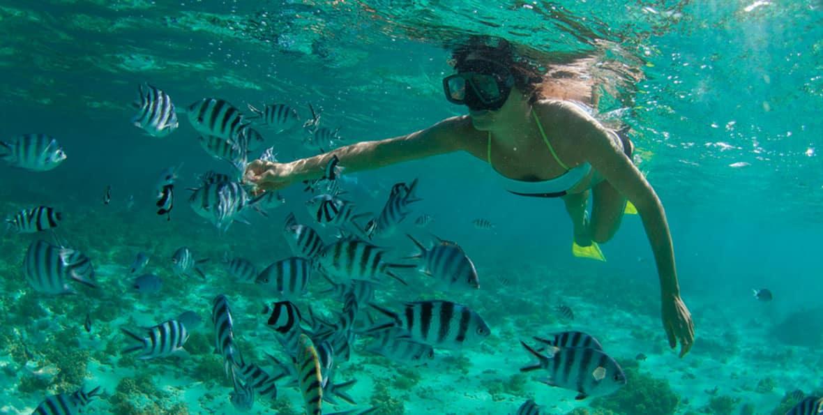 Isla Mauricio | Arenatours