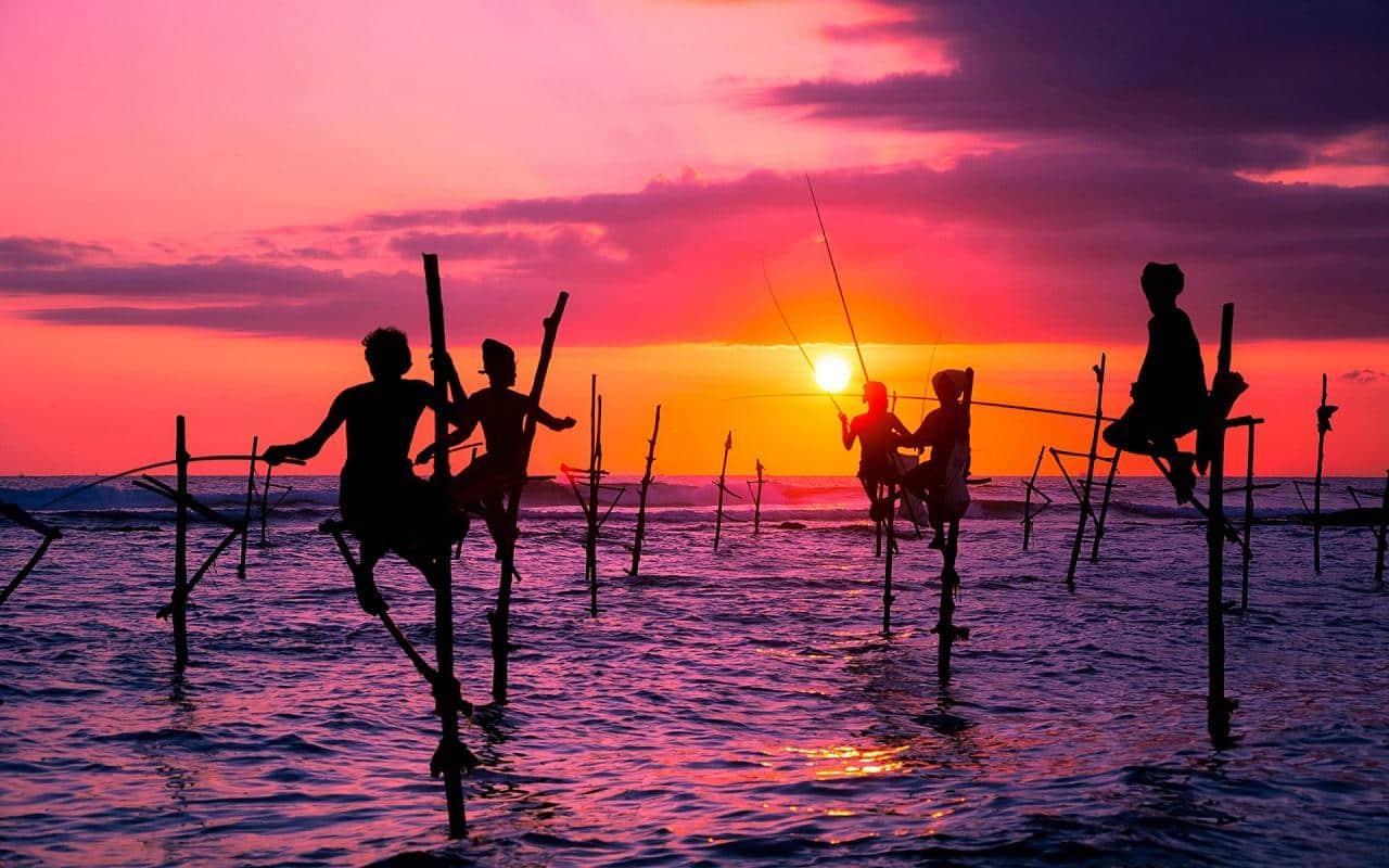 Pescadores zancudos de Weligama