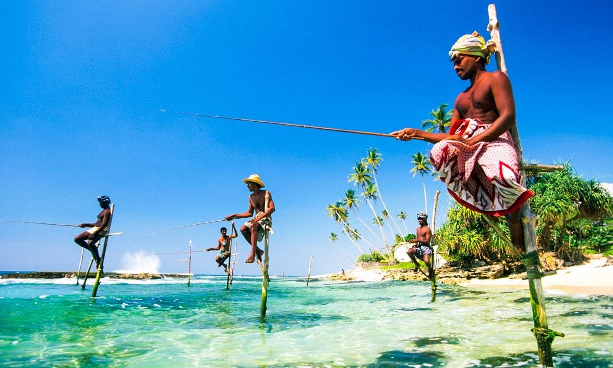 Pescadores zancudos en la playa