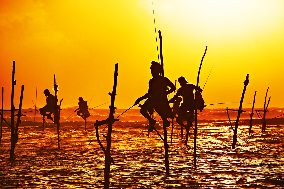 Stilt fishermen en Sri Lanka