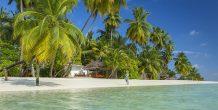 playa y vegetacion en Sun Aqua Vilu Reef