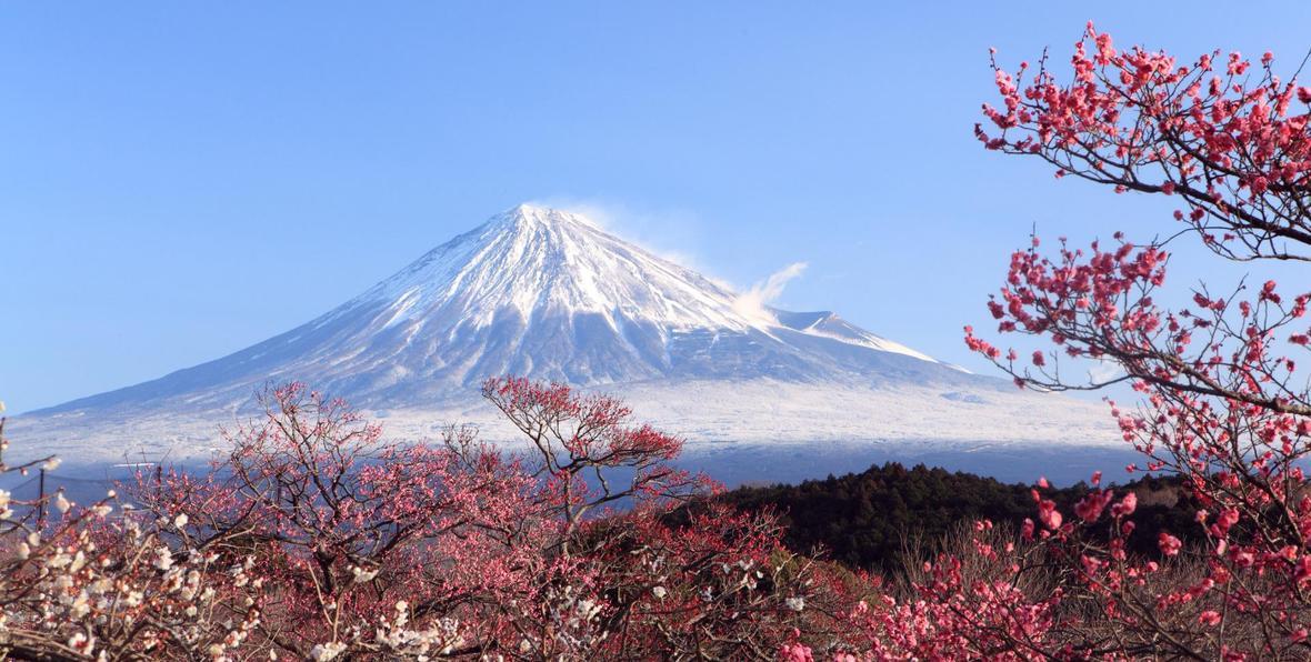 Vista del Monte Fuji en Japón